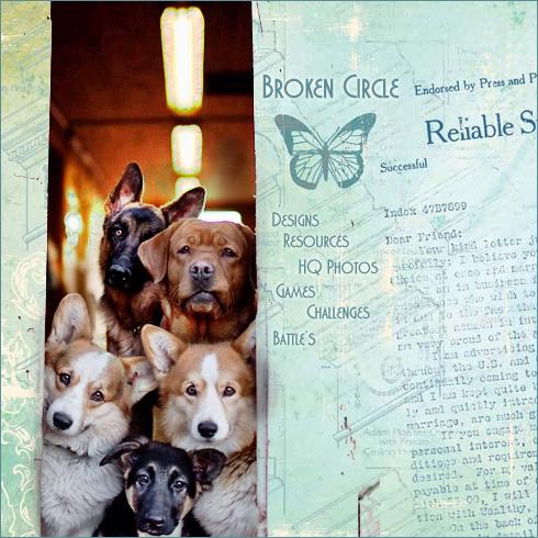 hond-poster.jpg